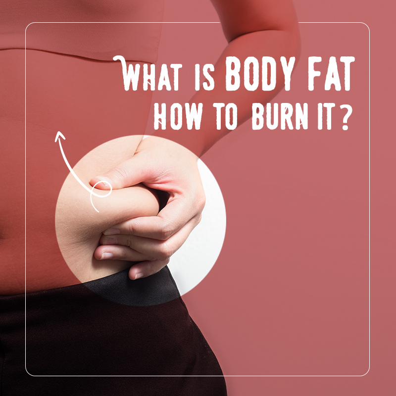 Burn Body Fat