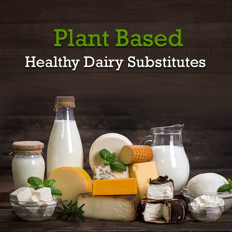 Plant Based Healthy Dairy Substitues