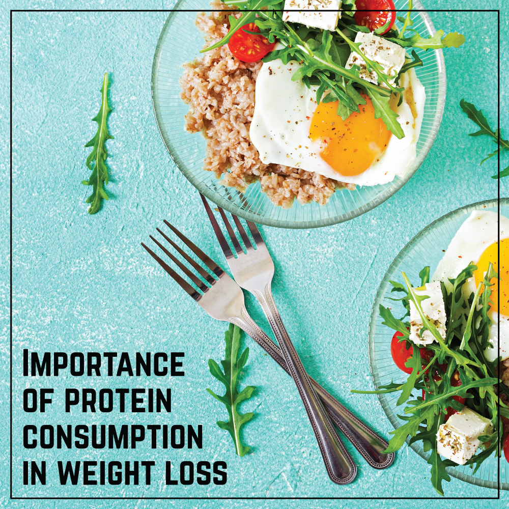 Importance of protein consumption in weight loss